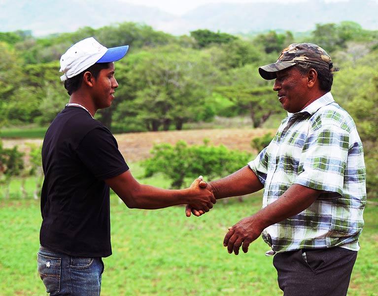 Técnico Superior en Ciencias Agropecuarias
