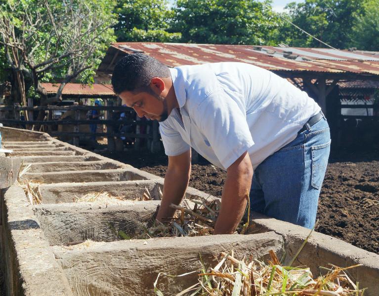 ingenieria-agronomica